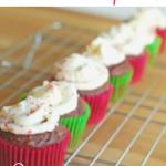 PeppermintChocolateCupcakes