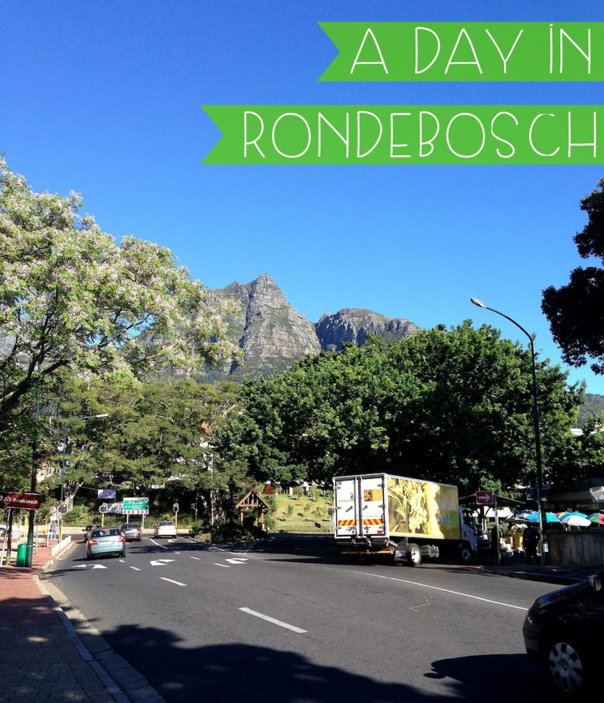 A day in our southern suburb, Rondebosch, in Cape Town, South Africa.