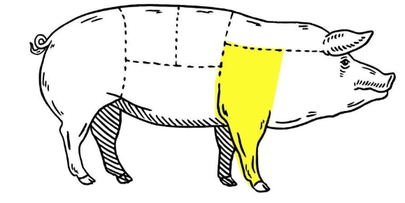 Outline of a pig cut into sections with the front leg highlighted.